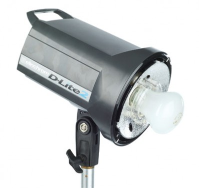 Elinchrom D-lite 2 twin head