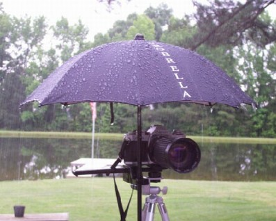 Probrella