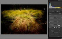 Adobe Photoshop CS4: Dodge and Burn
