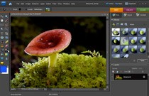 Adobe Photoshop Elements 7: Smart Brush