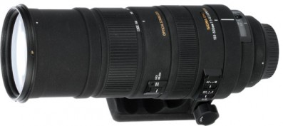 Sigma 150-500mm vs Tamron 200-500mm