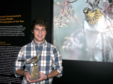 Interview with Young Wildlife Photographer of the Year Fergus Gill