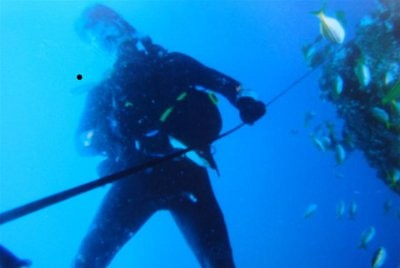 Underwater Camera pictures of dive survive after four years