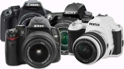 Christmas Buying Guide - Mid-Price DSLRs